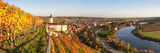 Vineyards around a Castle  Horneck Castle  Gundelsheim  Baden-Wurttemberg  Germany