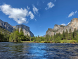 River Flowing Through a Forest  Merced River  Yosemite Valley  Yosemite National Park  Californi