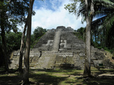 Ruins of a Temple  High Temple  Lamanai  Belize