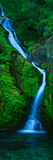 Waterfall in a Forest  Sullivan Falls  Opal Creek Wilderness  Oregon  USA