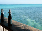 Two Local Beers on Ledge at Popular Bar  Palapa Bar  San Pedro  Ambergris Caye  Corozal District