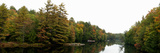 Reflection of Trees in the Musquash River  Muskoka  Ontario  Canada