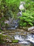 Stream Flowing Through Rocks  Villa Pliniana  Torno  Lake Como  Lombardy  Italy