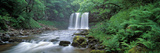 Waterfall in a Forest  Sgwd Yr Eira (Waterfall of Snow)  Afon Hepste  Brecon Beacons National Pa