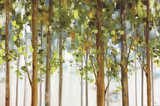 Forest Study I Crop Reproduction d'art par Lisa Audit