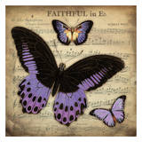 Musical Butterflies 3