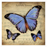 Musical Butterflies 2