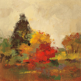 Fall Forest I