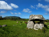 Dolmen  Portal Tomb in Stone Circlke  Carrowmore Megalithic Cemetery  C&#250;il Irra Peninsula  Ireland