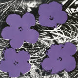 Flowers  C1965 (4 Purple)