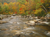 Swift River Flowing Trough Forest in Autumn  White Mountains National Forest  New Hampshire  USA