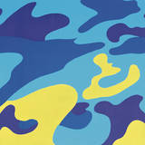 Camouflage  1987 (Blue  Yellow)