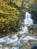 Moss Glen Falls in Autumn  Granvillie  Vermont  USA