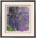 Nympheas  1916-19