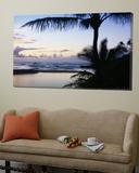 Palm Tree on the Beach  Wailua Bay  Kauai  Hawaii  USA