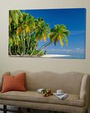 Palm Trees and Tropical Beach  Maldive Islands  Indian Ocean