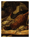 Pheasant and Woodcock  from Troph&#233;e De Chasse  or Hunting Trophies  1862  Detail