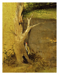 Green Woodpecker at Base of Tree  from Adoration of the Magi  Tripytch  C1495