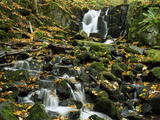 Small Waterfalls Cascading over Moss-Covered Rocks