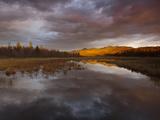 Cloud Reflections in Moose Creek
