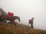 A Horseman Descends a Foggy Trail Through 'Halka' Grasslands