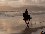 A Rider Exercises a Horse in the Evening on the Beach at Rosbehy Point