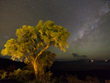 The Milky Way Above the Ngorongoro Crater  Tanzania