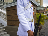 Soldier of the Kings Guard with Rifle and Bayonet at the Throne Hall