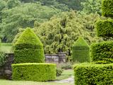 A Topiary Garden in Spring