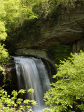 Scenic View of Looking Glass Falls in Spring