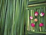 A Flower Carpet for Easter