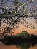 The Jefferson Memorial and Reflection on the Tidal Basin  at Dawn