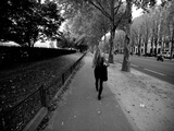 A Woman Walks in a Tree Lined Street in Paris