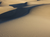 Sunlight  Shadows and Ripples on the Mesquite Dunes at Stovepipe Wells