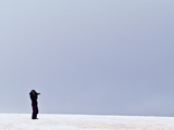 A Lone Tourist Photographing on a Windswept Hillside in Antarctica