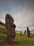 Ancient Moai Statues Dot a Hillside on Rano Raraku Crater
