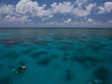 A Lone Snorkeler on the Water at the Great Barrier Reef