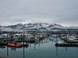 Boats in Marina with Snow Capped Mountains in the Background
