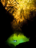 A Diver Exploring an Underwater Cave in a Cenote