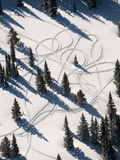 Aerial View of Snowmobile Track Patterns in the Trees Near Park City