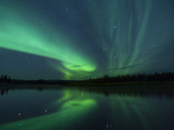The Aurora Borealis Streaks the Sky Above Birch Creek