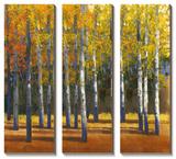 Fall in Glory I Tableau multi toiles par Tim O'toole
