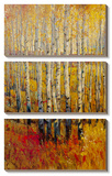 Vivid Birch Forest