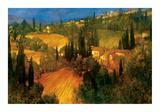 Hillside - Tuscany