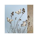 Papillons Giclée par Caroline Gold