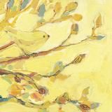 Dipped in Honey Reproduction d'art par Jennifer Lommers