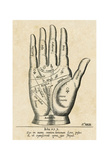 Palmistry: Palm Diagram