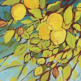 The Lemons Above Reproduction d'art par Jennifer Lommers