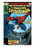 Amazing Spider-Man No200 Cover: Spider-Man Fighting