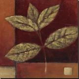 Crimson Leaf Study II